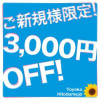 toyoko_hitodumajo_640640_heaven_2
